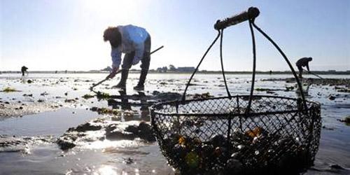 Acheter la sonde acoustique pour la pêche en hiver